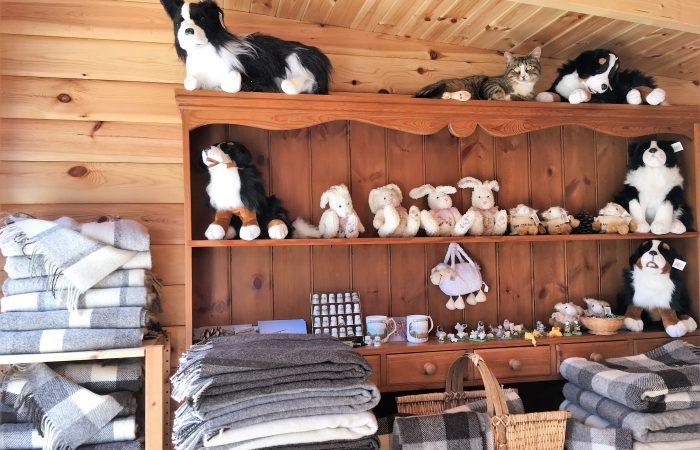 Stuffed animals at Forget Me Not Holidays